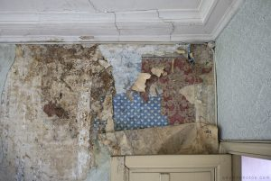 Adam X Chateau de la Chapelle urbex urban exploration belgium abandoned wallpaper textures decay mould