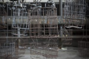 Basket Zeche P Mine Germany Deutschland Urbex Adam X Urban Exploration Access 2016 Abandoned decay lost forgotten derelict