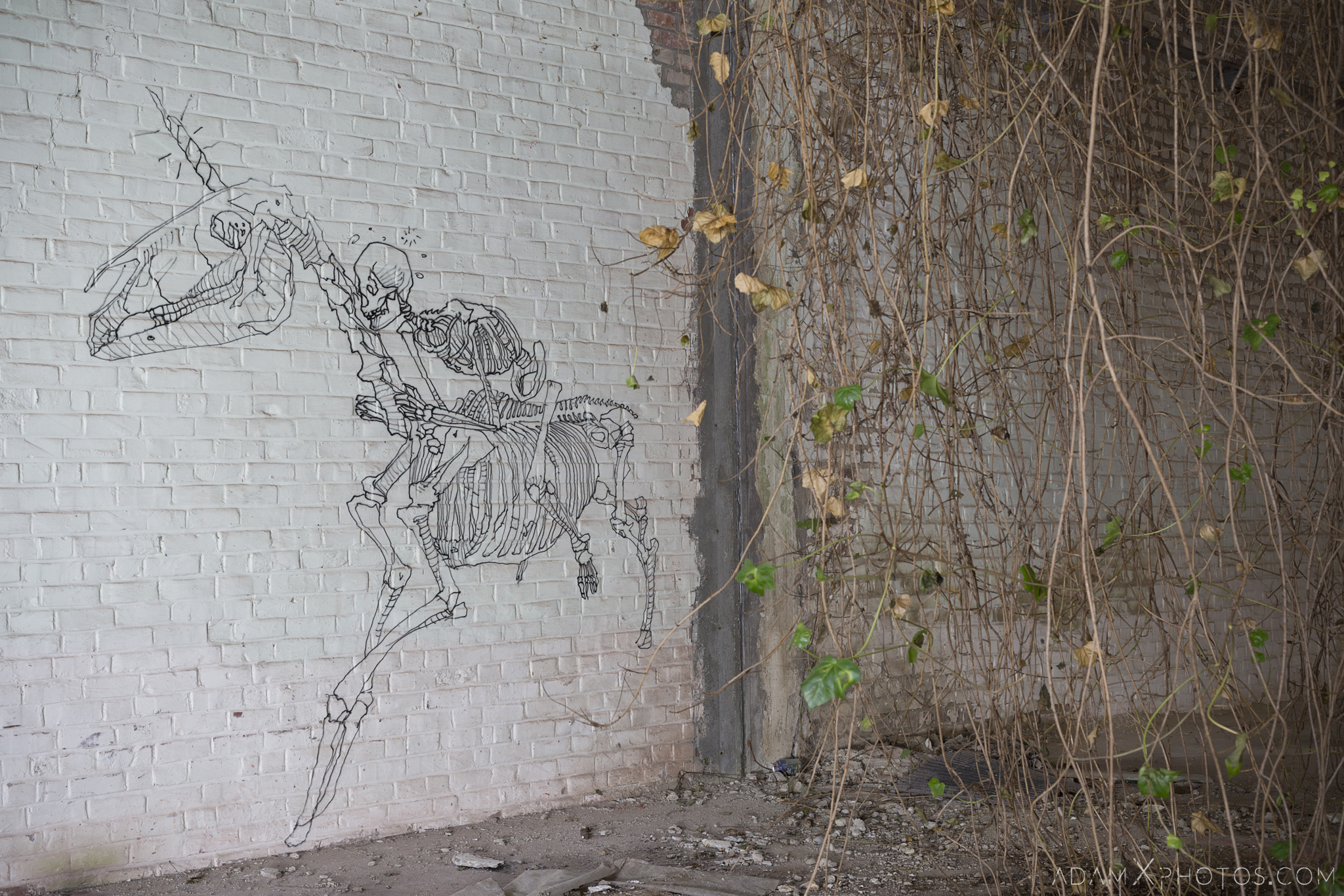skeleton horseman horse rider unicorn Overgrown squatters Usine Skeleton factory ROA Klaas Van der Linden Adam X Urbex Urban Exploration Belgium Access 2017 Abandoned decay lost forgotten derelict location creepy haunting eerie