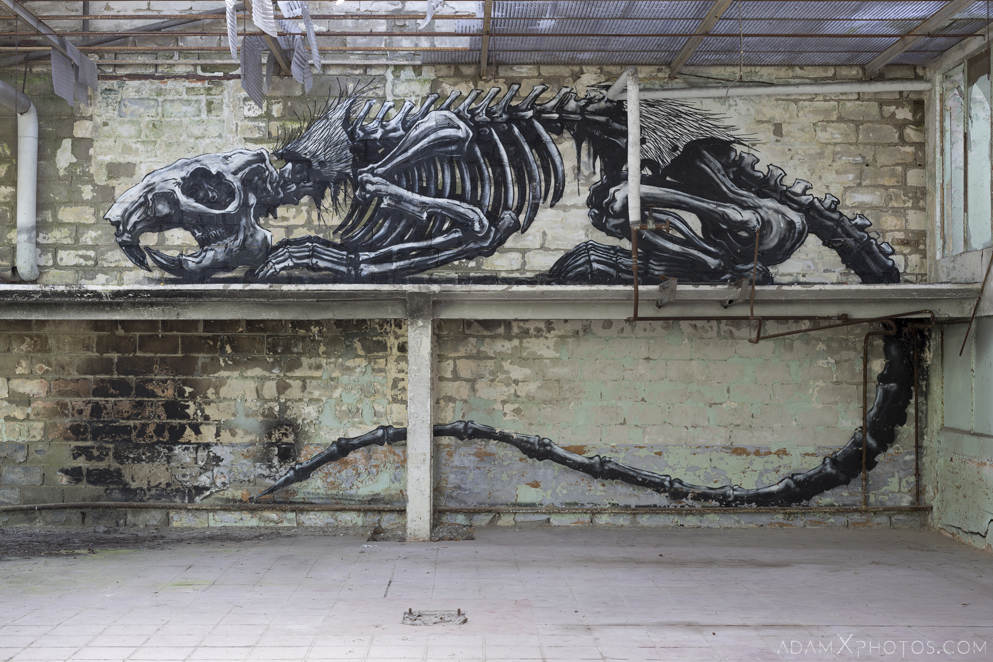 rat skeleton Overgrown squatters Usine Skeleton factory ROA Klaas Van der Linden Adam X Urbex Urban Exploration Belgium Access 2017 Abandoned decay lost forgotten derelict location creepy haunting eerie