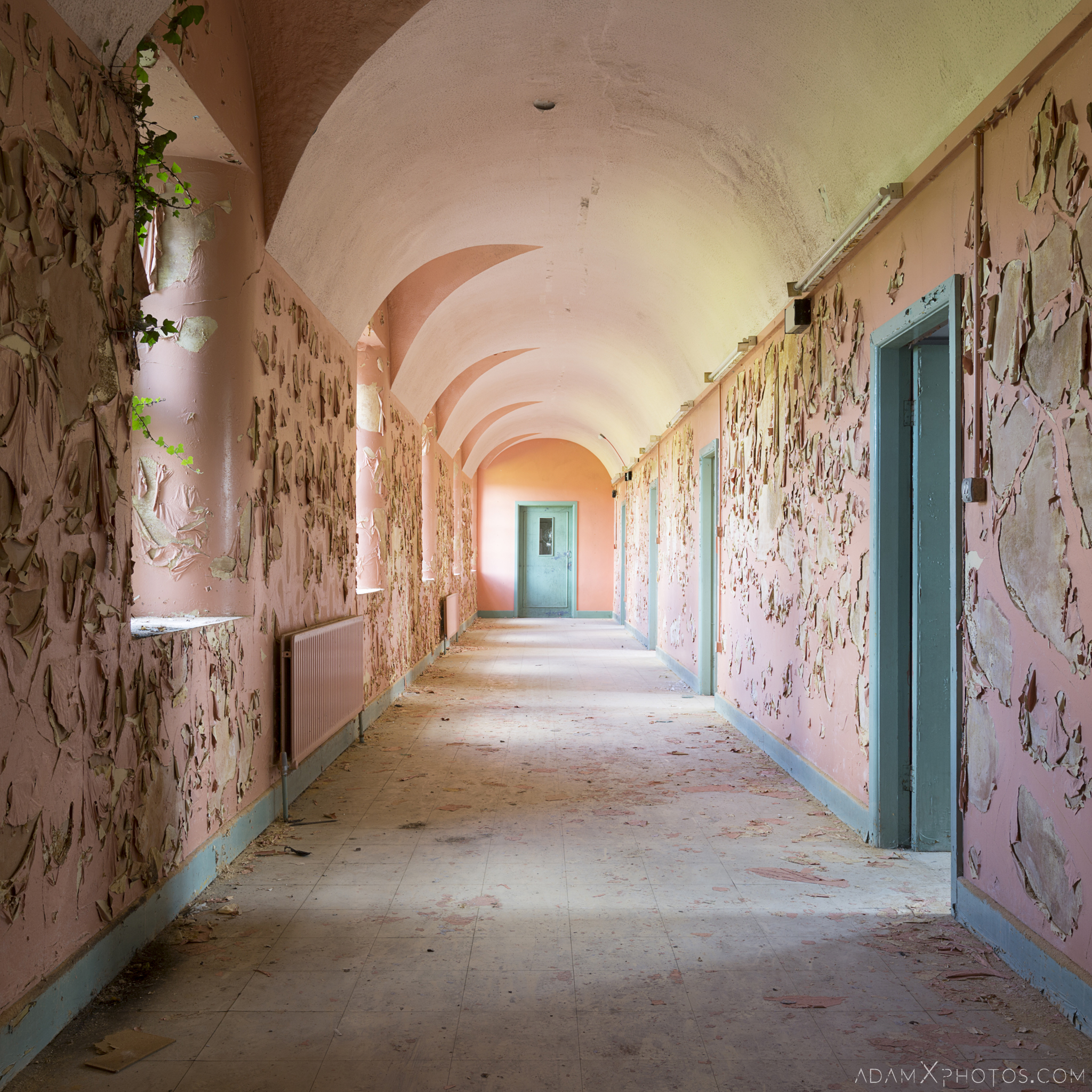pink and blue corridor ivy peeling paint Connacht District Lunatic Asylum St Brigid's Hospital Adam X Urbex Urban Exploration Ireland Ballinasloe Access 2017 Abandoned decay lost forgotten derelict location creepy haunting eerie