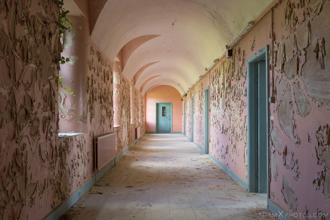 pink and blue corridor ivy peeling paint Connacht District Lunatic Asylum St Brigid's Hospital Adam X Urbex Urban Exploration Ireland Ballinasloe Access 2017 Abandoned decay lost forgotten derelict location creepy haunting eerie