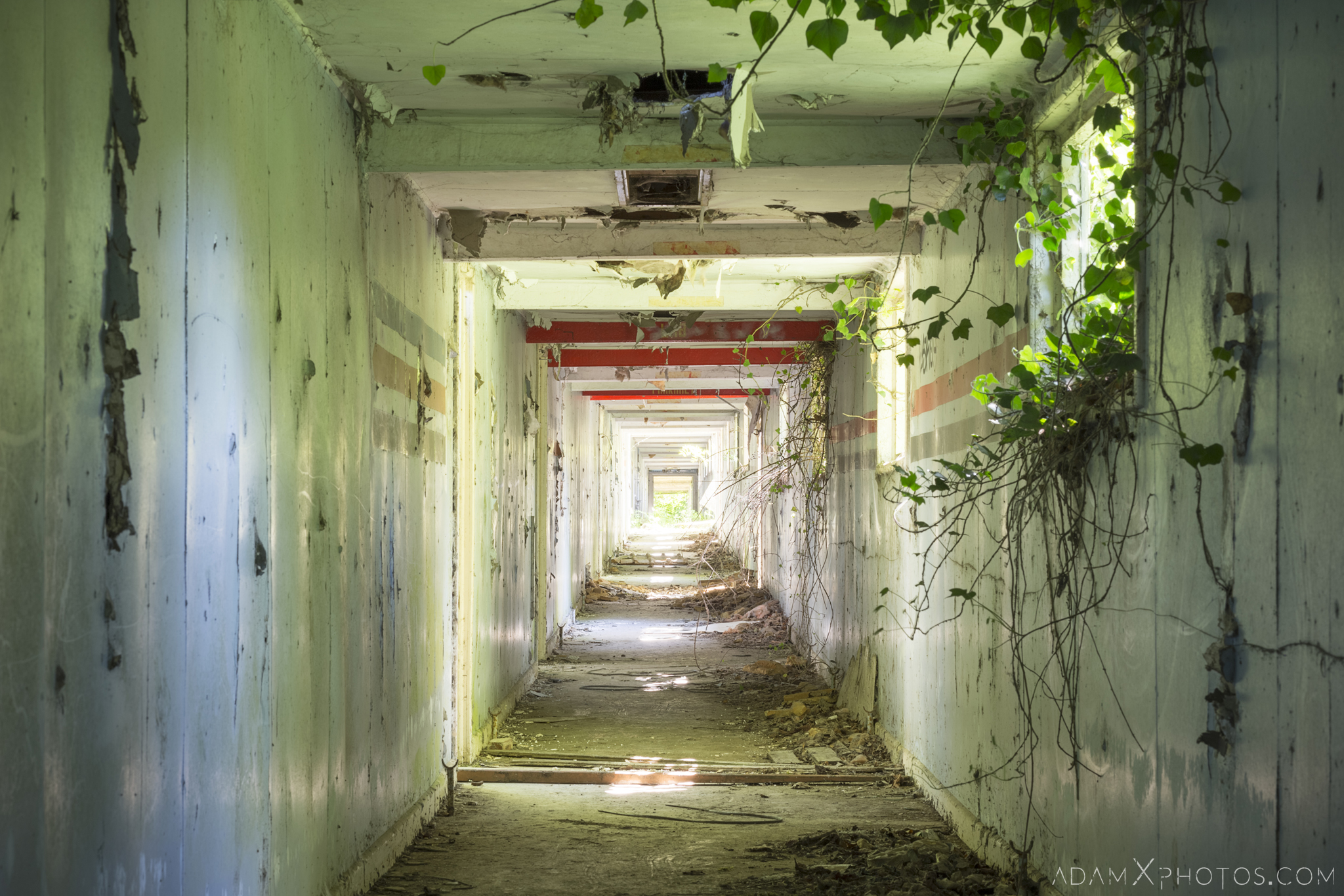 Long Corridor overgrown ivy peeling paint Nocton Hall RAF Hospital Lincolnshire Adam X Urbex Urban Exploration Access 2018 Abandoned decay lost forgotten derelict location creepy haunting eerie