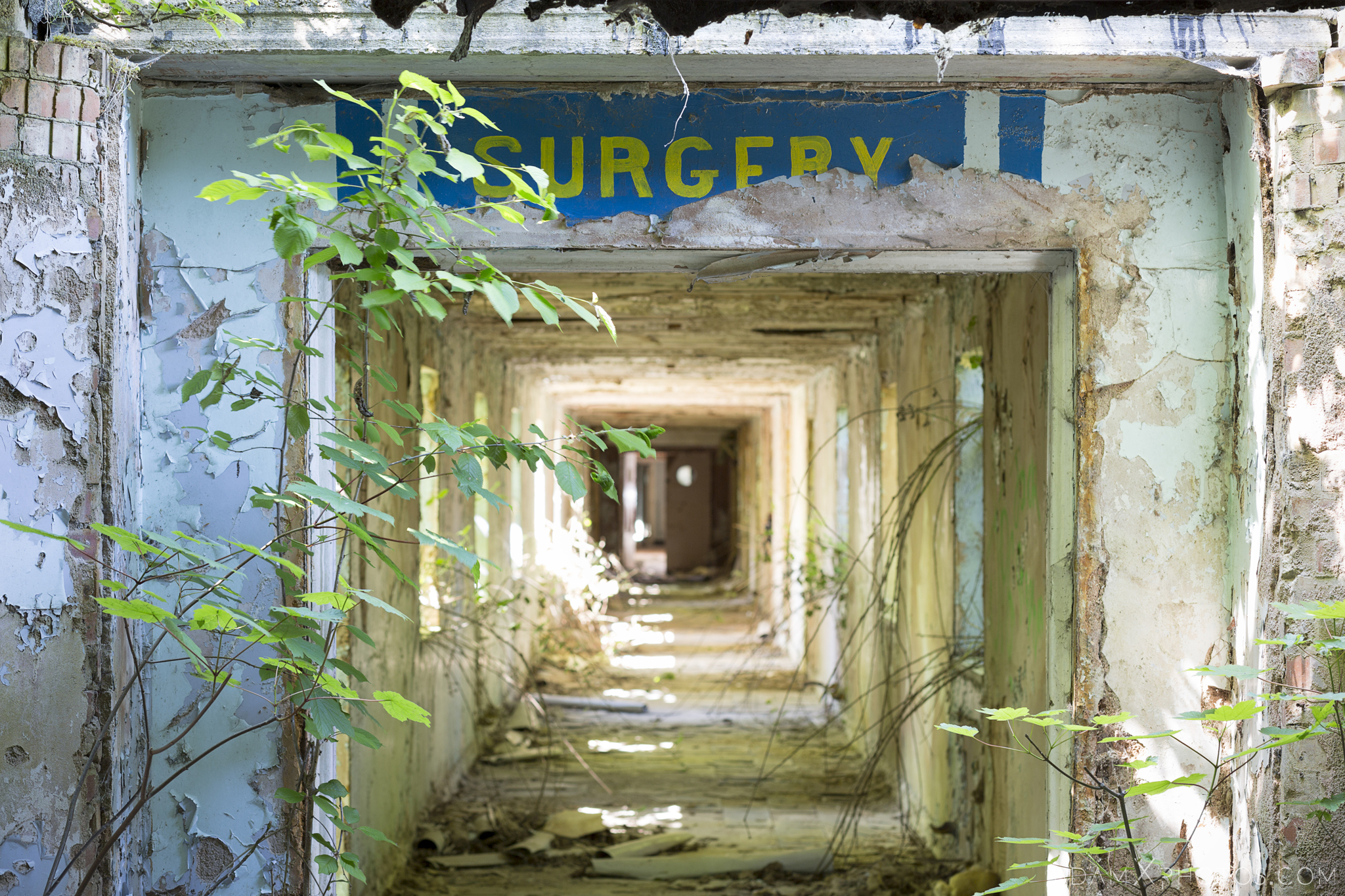 Surgery long corridor overgrown Nocton Hall RAF Hospital Lincolnshire Adam X Urbex Urban Exploration Access 2018 Abandoned decay lost forgotten derelict location creepy haunting eerie