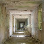 Long corridor peeling paint overgrown ivy Nocton Hall RAF Hospital Lincolnshire Adam X Urbex Urban Exploration Access 2018 Abandoned decay lost forgotten derelict location creepy haunting eerie